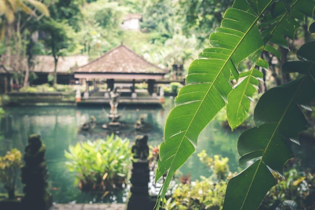 Bali relaks świeca zapachowa 100% olej rzepakowy